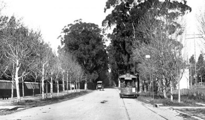 Avenida Lezica. Año 1917. (Foto 1684 FMH.CMDF.IMM.UY)