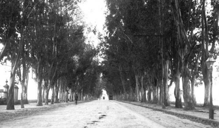 Avenida Lezica. Año 1917. (Foto 1685 FMH.CMDF.IMM.UY)